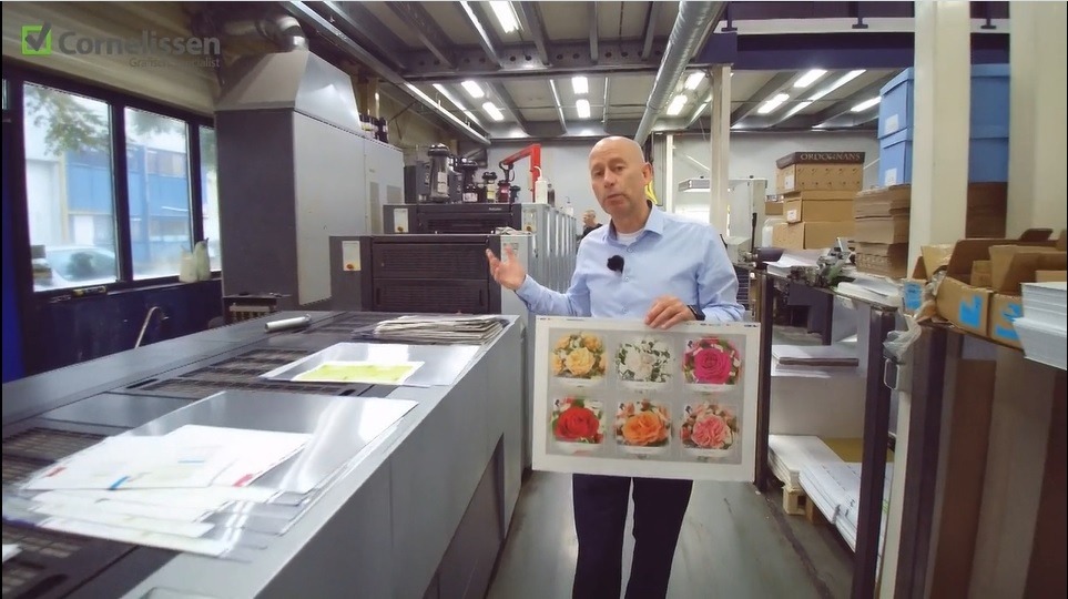 Heidelberg Anicolor drukpers met UV-droging